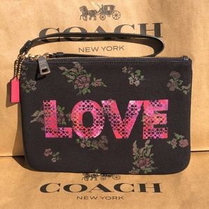 Coach LOVE Gallery Pouch With Jason Naylor Graphic
